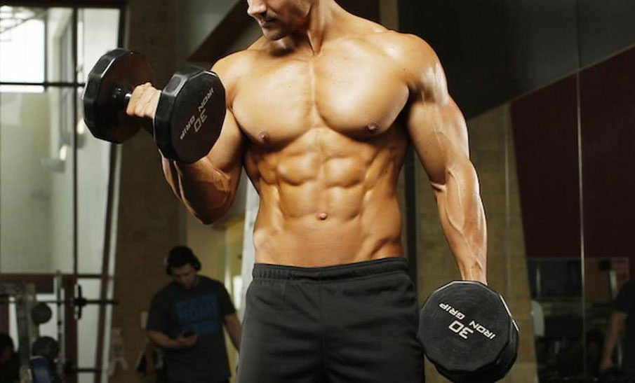 Gym goer during an exercise for the biceps with dumbells.
