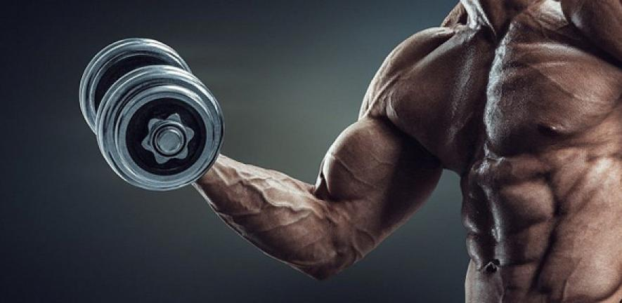 Strenght training challenges and build your muscles.